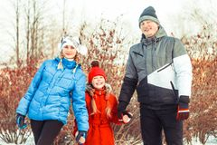 Family winter in the snow. Attractive family having fun in a winter park Stock Photography