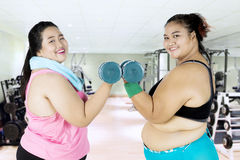 Attractive fat women doing workout Stock Photos