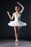 Attractive female ballet dancer posing in studio Stock Image