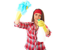Attractive Female Cleaner With Spray And Cloth Stock Image