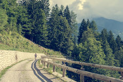 Attractive female cyclist tackling a steep road. Enjoying Madonna di Campiglio, Italy Royalty Free Stock Photography