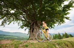 Attractive female cyclist with yellow mountain bicycle, enjoying sunny day in the mountains. Attractive happy girl cyclist cycling on yellow mountain bike under stock images