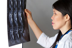 Attractive female Doctor looking at MRI Royalty Free Stock Photography