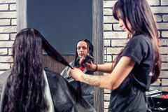 Attractive female hairdresser combing wet hair of young brunette. Women while she is sitting in armchair in beauty salon Stock Image