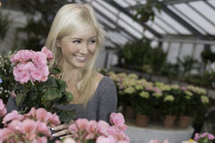 Female in a big greenhouse Royalty Free Stock Photography