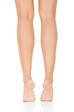 Attractive female legs. Vertical. Royalty Free Stock Photos