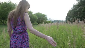 Attractive female model in purple dress.She walking trough meadow. A young girl walks through the tall grass not far from the city. Slow motion stock footage