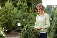 Attractive female purchasing shrub Royalty Free Stock Image