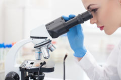 Attractive female researcher is analyzing samples Stock Image