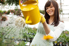 Attractive Female Watering Plants Royalty Free Stock Images