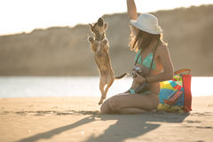 Attractive fit trendy modern hipster woman playing with straw puppy dog on beach Royalty Free Stock Photo