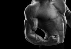 Attractive fitness male athlete showing his biceps. Handsome muscular fitness male showing his biceps. Black and white photo Royalty Free Stock Photos