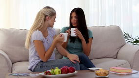 Attractive friends chatting over cups of coffee stock footage