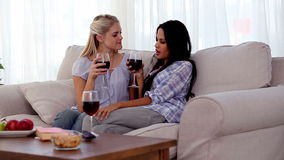 Attractive friends clinking their glasses of red wine together stock video footage