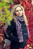 Attractive girl in autumn Royalty Free Stock Image