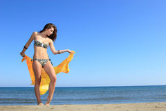Attractive girl on the beach Stock Image