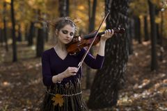 Attractive girl fiddle violin over the fall park background Stock Image
