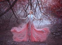 Attractive girl with gorgeous blond hairdo in the forest near the branches of trees, dressed in a light amazing pink. Tender dress, throws it down, flying stock photos