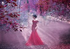 Free Attractive Girl In A Pink Dress Stock Images - 106164134