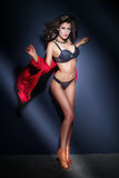 Attractive girl in lingerie Stock Images