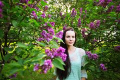 Attractive girl in the park against a flowering tree. Stock Image