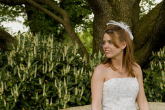 Attractive girl in party dress Royalty Free Stock Images