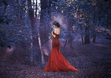 Attractive girl in a red dress. Walk in the fairy forest. Artistic Photography royalty free stock photo