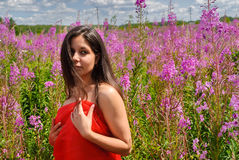 Attractive girl with red scarf on meadow Stock Image