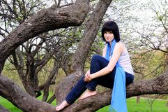 Attractive girl sitting on a tree Royalty Free Stock Images