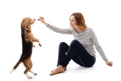 Attractive girl is taming a puppy Royalty Free Stock Images