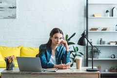 Attractive girl using smartphone and looking at camera while studying with laptop. At home royalty free stock photos