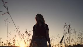 Attractive girl walking in the field through the tall grass. young woman at sunset enjoying the journey stock footage