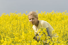 Attractive girl on a yellow field Royalty Free Stock Images