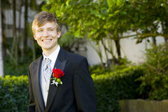 Attractive groom Royalty Free Stock Photos
