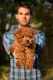 Attractive Guy Holding Cute Puppy. An image of a toy poodle being held toward the viewer by a young  man Stock Images
