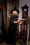 attractive halloween witch in black with broom Royalty Free Stock Image