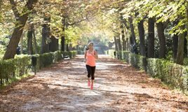 Attractive and happy runner woman in Autumn sportswear running a. Young attractive and happy runner woman in Autumn sportswear running and training on jogging Royalty Free Stock Image
