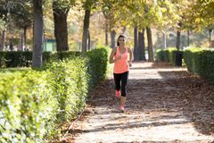 Attractive and happy runner woman in Autumn sportswear running a. Young attractive and happy runner woman in Autumn sportswear running and training on jogging Royalty Free Stock Photography