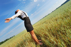 Attractive happy young woman in the field Stock Images