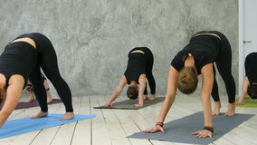 Attractive happy young women working out indoors, standing in upward-facing dog pose, urdhva mukha svanasana