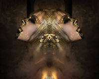 Attractive hot woman with beautiful liquid gold on her face and body is posing dark background in smoke, closed eyes Royalty Free Stock Photo