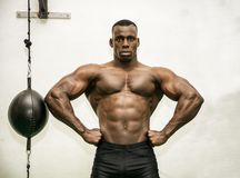 Attractive hunky black male bodybuilder in gym Stock Image