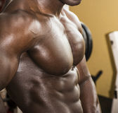 Attractive hunky black male bodybuilder pose in Royalty Free Stock Photo