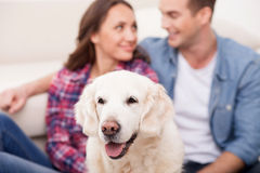 Attractive husband and wife with cute pet Royalty Free Stock Photos