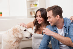 Attractive husband and wife with pretty animal Stock Image