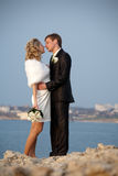 Attractive just married at the sea Royalty Free Stock Image