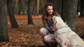 Attractive lady with her labrador dog Royalty Free Stock Photo