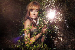 Attractive lady posing in forest Royalty Free Stock Photos