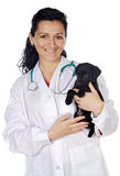 Attractive lady veterinarian Royalty Free Stock Photos