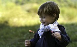 Attractive little boy holding wildflowers Stock Photography